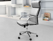 Stylish Silver Leatherette Office Chair Z-312