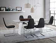Grey Dining Chair by Domitalia