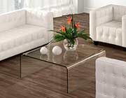 Glass Coffee Table Z119