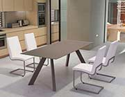 Modern Glass Table Z856