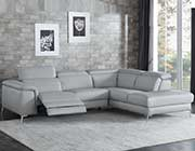 Light Gray Sectional Leather sofa HE256