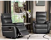 Grey Leather Recliner DS Ward