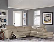 Taupe Sectional Leather sofa HE256