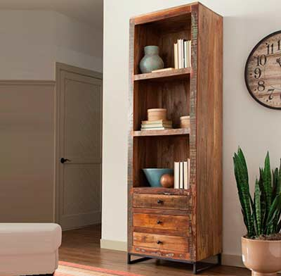 Transitional Charming Bookcase CO 819