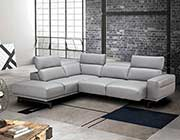 Light Gray Sectional sofa NJ 981