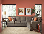 Modern Fabric Sectional CO435
