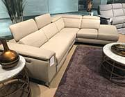 Power Recliner Sectional Sofa HE 256