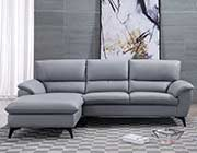 Modern Sectional Sofa in Gray AE 153